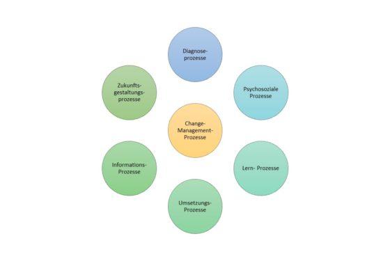 die 7 Basisprozesse der Organisationsentwicklung von Trigon erlauben ein ganzheitliches Betrachten, Planen und Verwirklichen.